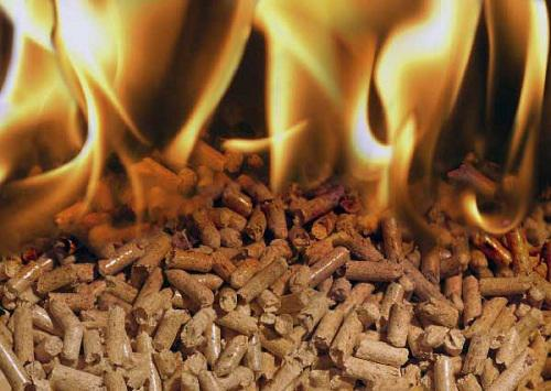Global Biomass Pellet Fuel Market 2017 by Key Players -