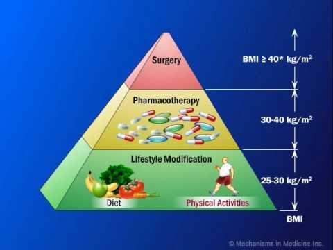 Obesity Management Market