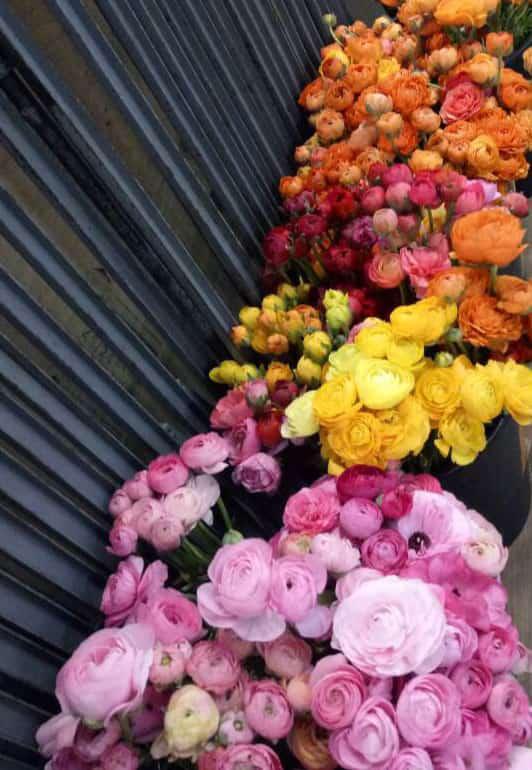 Ohara Florist - Penang Best Florist Shop
