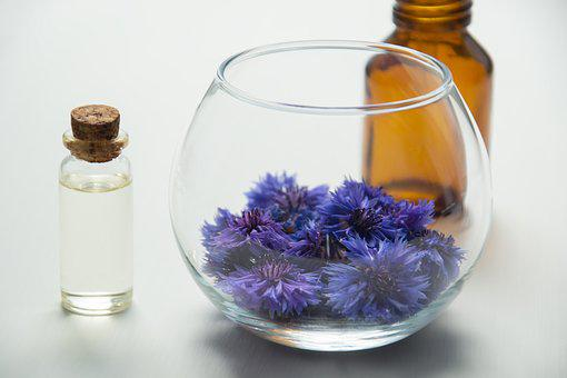 Essential Oil Market Trends and Opportunities for the Industry