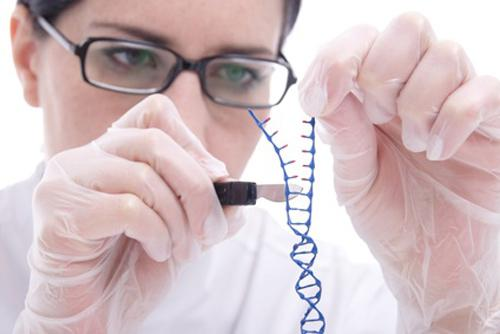 Gene Editing Market Size, trends research and forecast