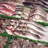 Global Fresh Fish and Seafood market