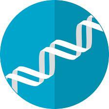 Pharmacogenomics Technology