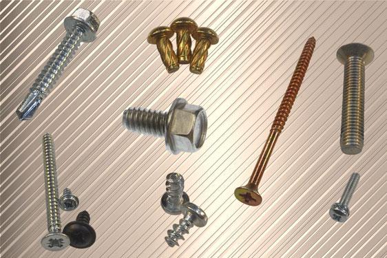 Screws from Challenge Europe with confidence and support