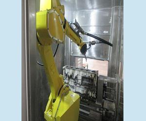 Global Robotic Flexible Washer Market