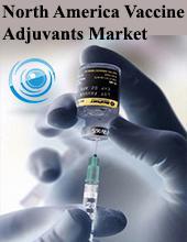 Key Tools for Innovative Vaccine Designs: Vaccine Adjuvants