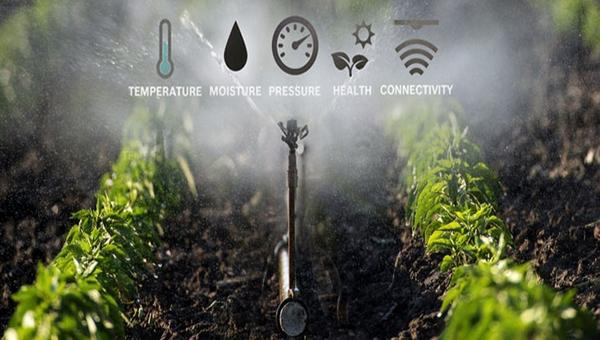 Smart Irrigation Market Size to Observe Steady Growth in the Near