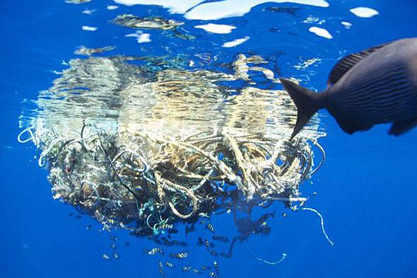 Automated Marine Debris Collection Equipment Market - Size will
