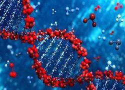 Next Generation Cancer Diagnostics Market Trends 2018