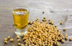 Soy Lecithin Market Growth Forecast by 2025: Lasenor emul,