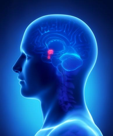 Global Acromegaly Treatment Market (Ectopic Acromegaly &