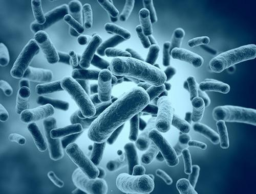 Microbiome Therapeutics Market: Challenges to Market Growth,