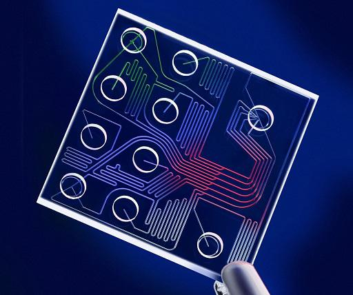 Lab-on-a-chip (LOC) Market Current and Future Industry Trends,