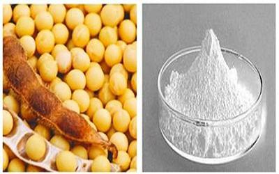 Global Soybeans Phytosterol Market