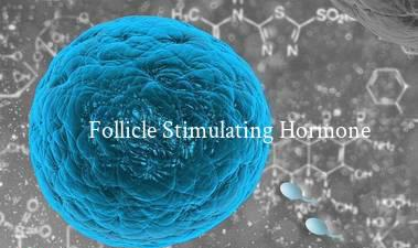 Follicle Stimulating Hormone Market to Reap Excessive Revenues