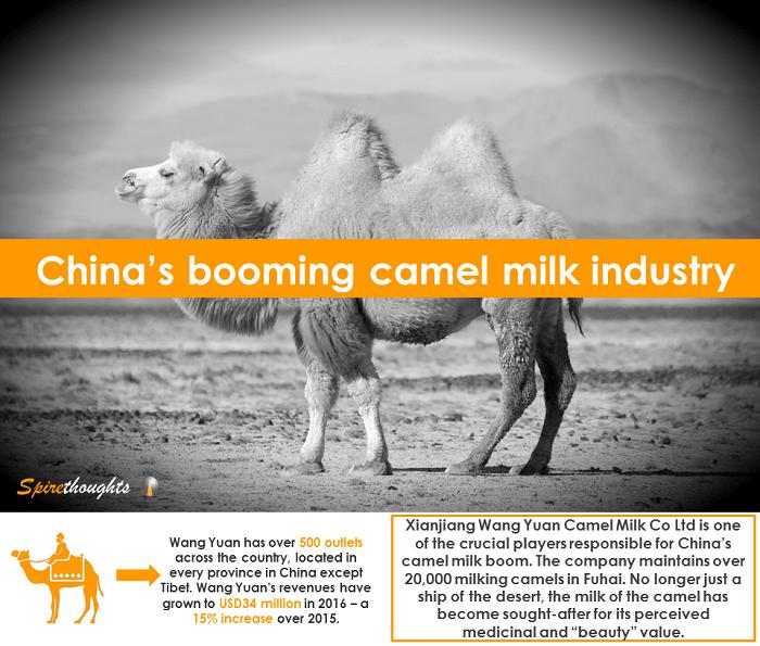 Spire, Spirethoughts, China, Camel, Milk Industry, Business, Investment, Growth