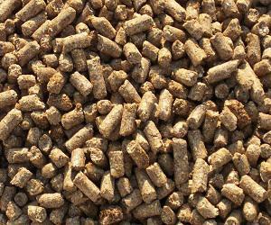 Global Veterinary Feed Additives Market