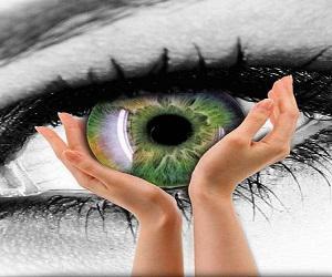 World Retinal Vein Occlusion Therapeutics Market
