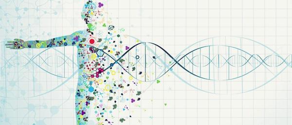 Precision Medicine Market Dynamics, Forecast, Analysis