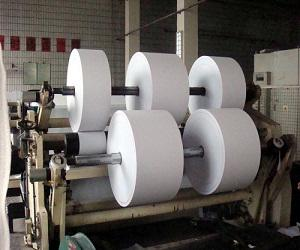 Global Paper and Pulp Market