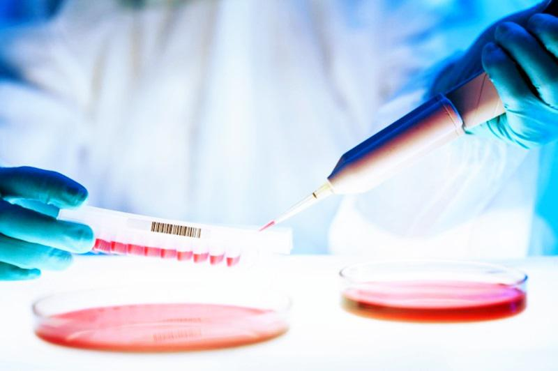 Cell Line Development Market 2017-2024 | United States Industry