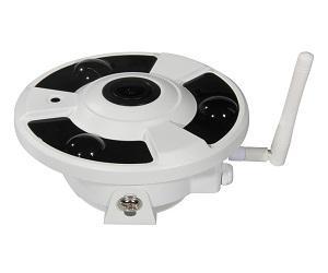 Global 360 Fisheye IP Cameras Market