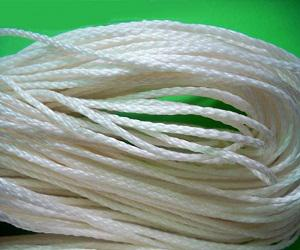 Global Ultra High Molecular Weight Polyethylene Ropes (UHMWPE) Ropes Market