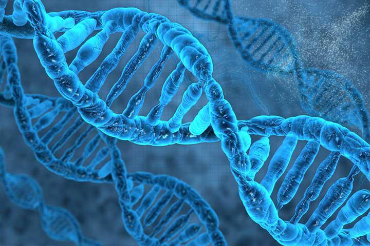 Proteomics Market Report 2018  Size, Shares, Growth, Analysis