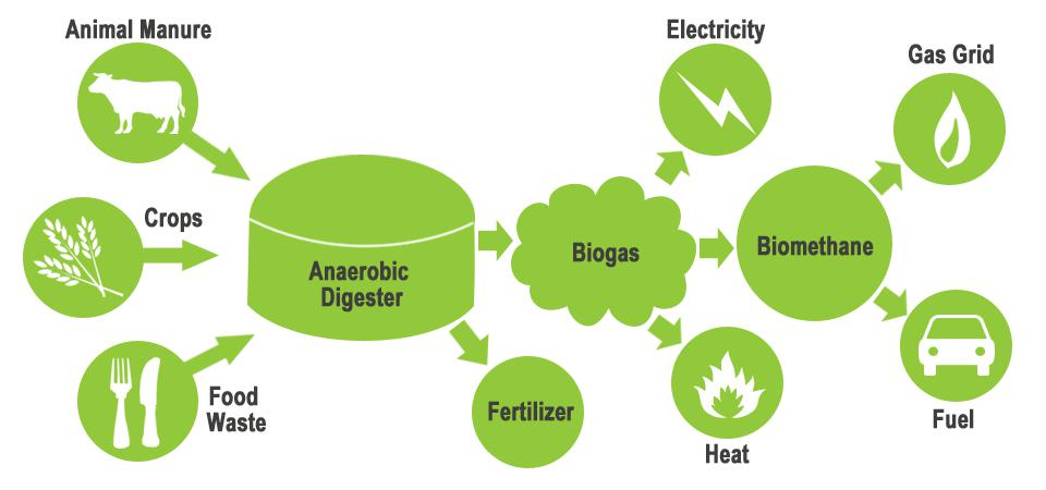 Europe Biogas Market size for 2016 was valued over USD 900 Million