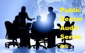 Public Sector Audit Services