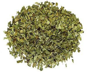 Global Yerba Mate Market