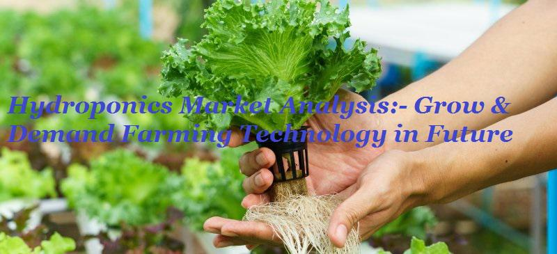 Hydroponics Market will multiply at an impressive CAGR of 15% |