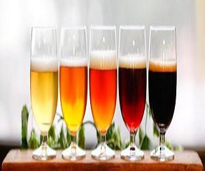 Global Fruit Beers Market