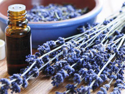 North America Aromatherapy Market – Industry Trends and Forecast to 2024