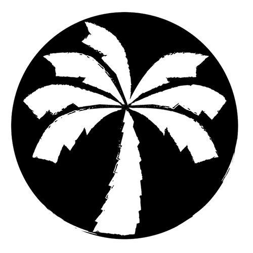 Logo of Pineapple Island