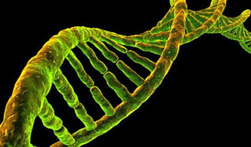 Genomics Market to Witness Huge Growth by 2023: Key Players