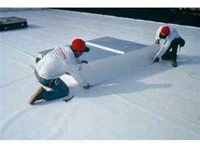 Global TPO Membranes Market Report, History and Forecast 2013-2025