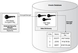 Database Encryption Market