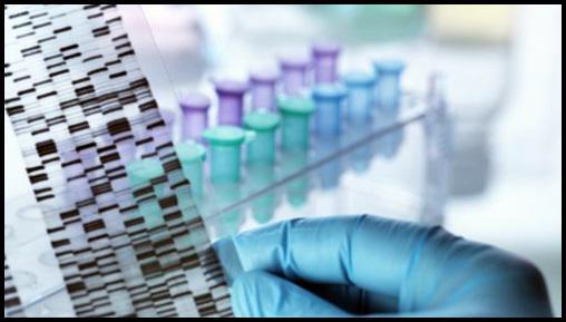 Genetic testing market 2018 – 2024 : Top Players – Abbott