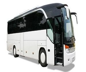 Global Bus Market