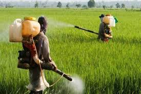 New Agricultural Pesticides Market Analysis Report