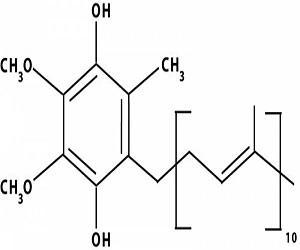 Global Coenzyme Q Market