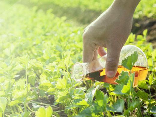 Agricultural Surfactant Market