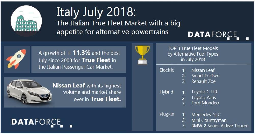 The Italian True Fleet Market with a big appetite for alternative