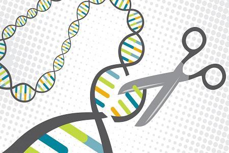 Global CRISPR And CRISPR-Associated Genes Market Analysis 2018
