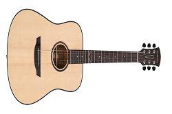 Guitars Market