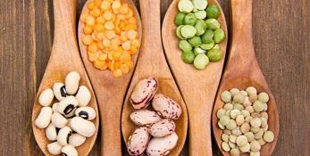 Nutritional Food Market