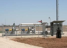 Biogas Flare System Market