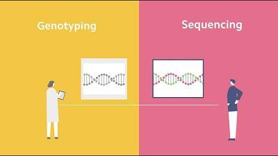 Genotyping Market- AMR