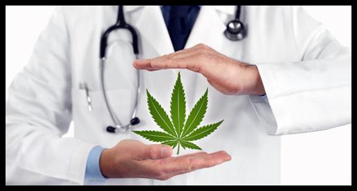Medical Marijuana Market : 2018 Prominent Players | Medical